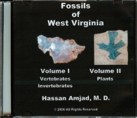 Fossils of West Virginia
